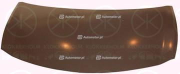 POKRYWA SILNIKA RENAULT CLIO III 05-09 6033280 042-33-100